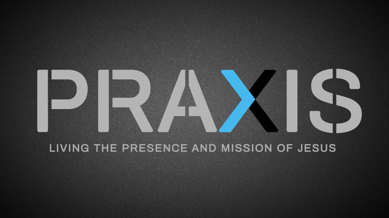 Series-Praxis